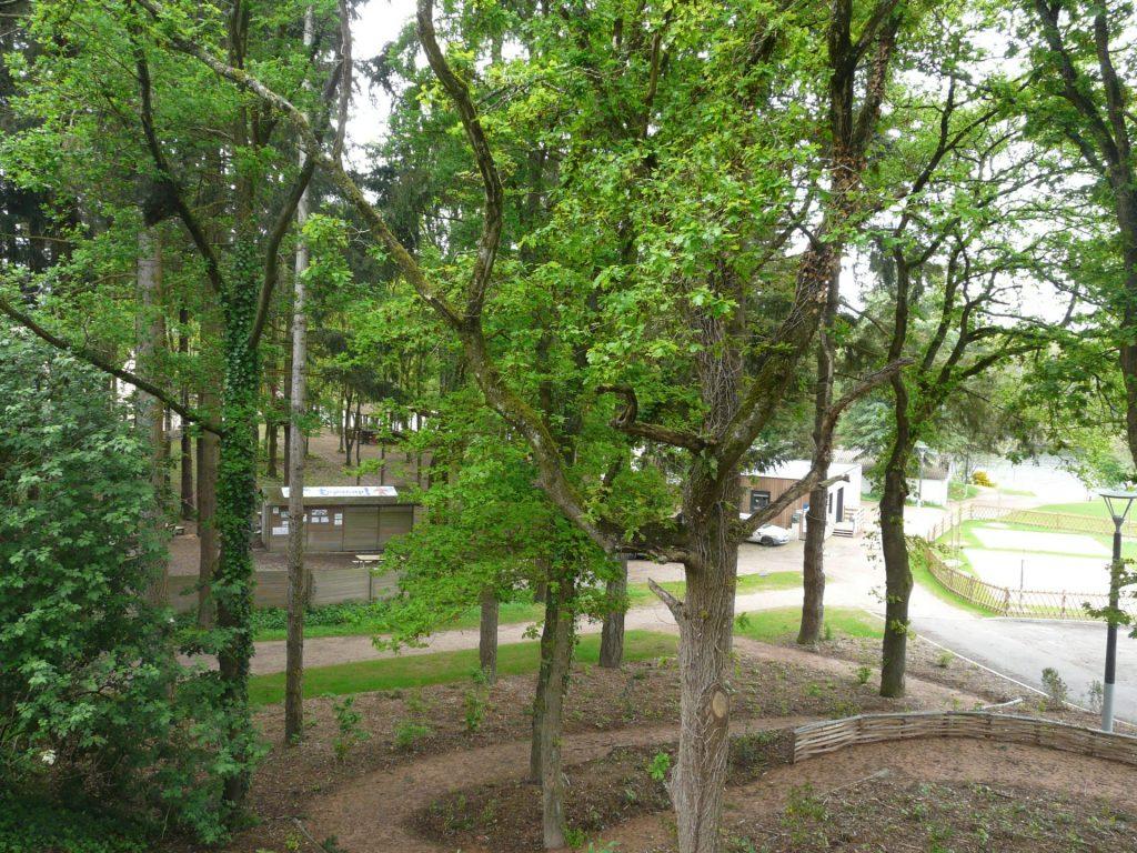 Lac de Savenay Campsite: Environment