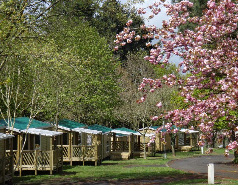 Lac de Savenay Campsite: Accommodation