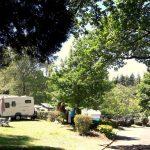 Camping Lac De Savenay : Ambiance 06