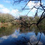 Camping Lac De Savenay : Balade Autour Du Lac 02