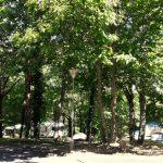 Lac de Savenay Campsite: Emplacement Camping Semi Ombragé 02