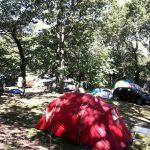 Camping Lac De Savenay : Emplacement Camping Semi Ombragé 03
