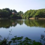 Camping Lac De Savenay : Le Lac Savenay 07