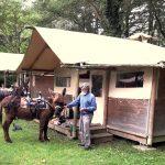 Lac de Savenay Campsite: Locataire Insolite 02