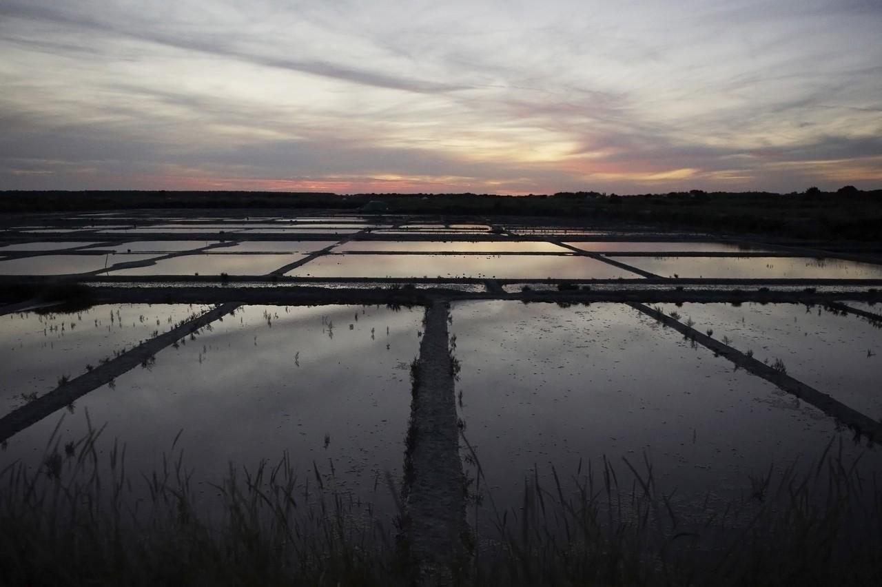 Lac de Savenay Campsite: Guérande salt marshes