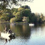 Lac de Savenay Campsite: Pêche 01