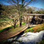 Camping Lac De Savenay : Pont De Singe Bord Du Lac