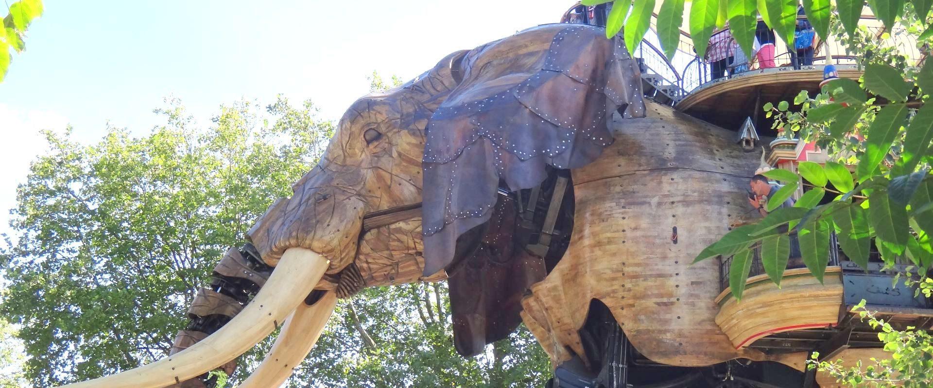 Camping Lac De Savenay : éléphant