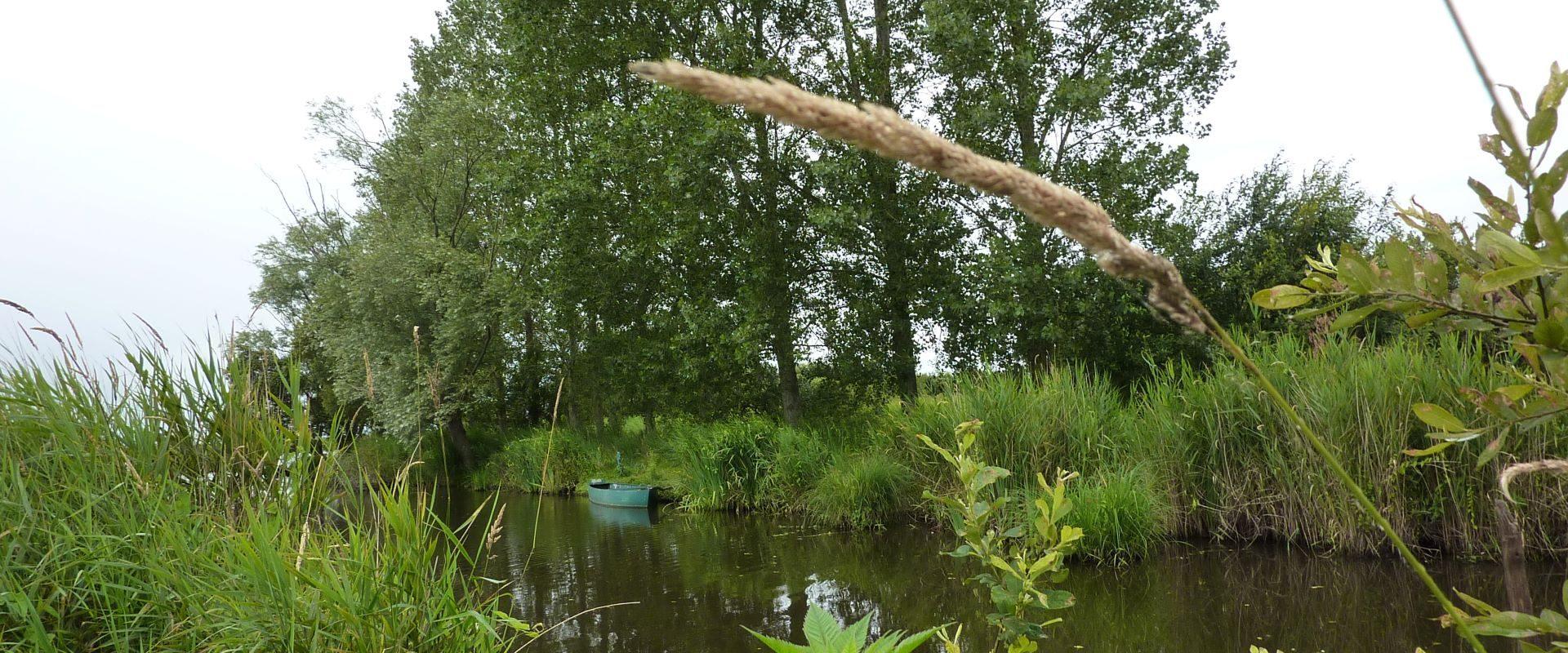 Camping Lac De Savenay : P1010797bis