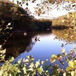 Lac de Savenay Campsite: Page Camping Activités Aire Multisports Aux Pieds Du Camping 01(3)